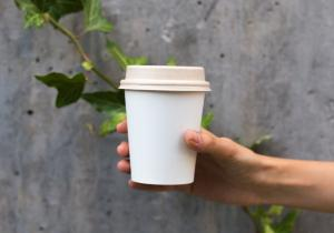 Pahare biodegradabile