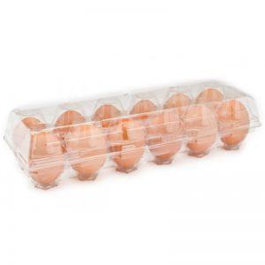 caserole plastic pentru oua